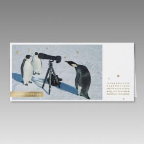 Weihnachtskarte mit außergewöhnlichem Pinguin-Motiv