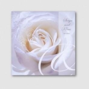 Elegante Einladungskarte mit weißer Rose