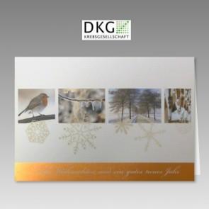 Spenden-Weihnachtskarte für DKG - Deutsche Krebsgesellschaft, Wintermotive